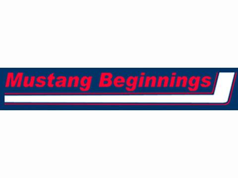Mustang Beginnings