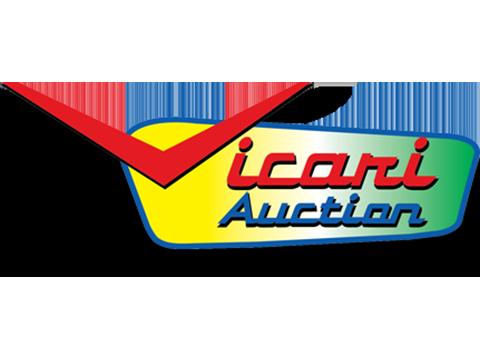 Vicari Auction