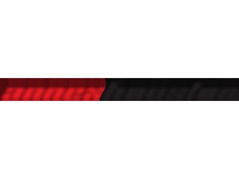 ANX Motors Inc.