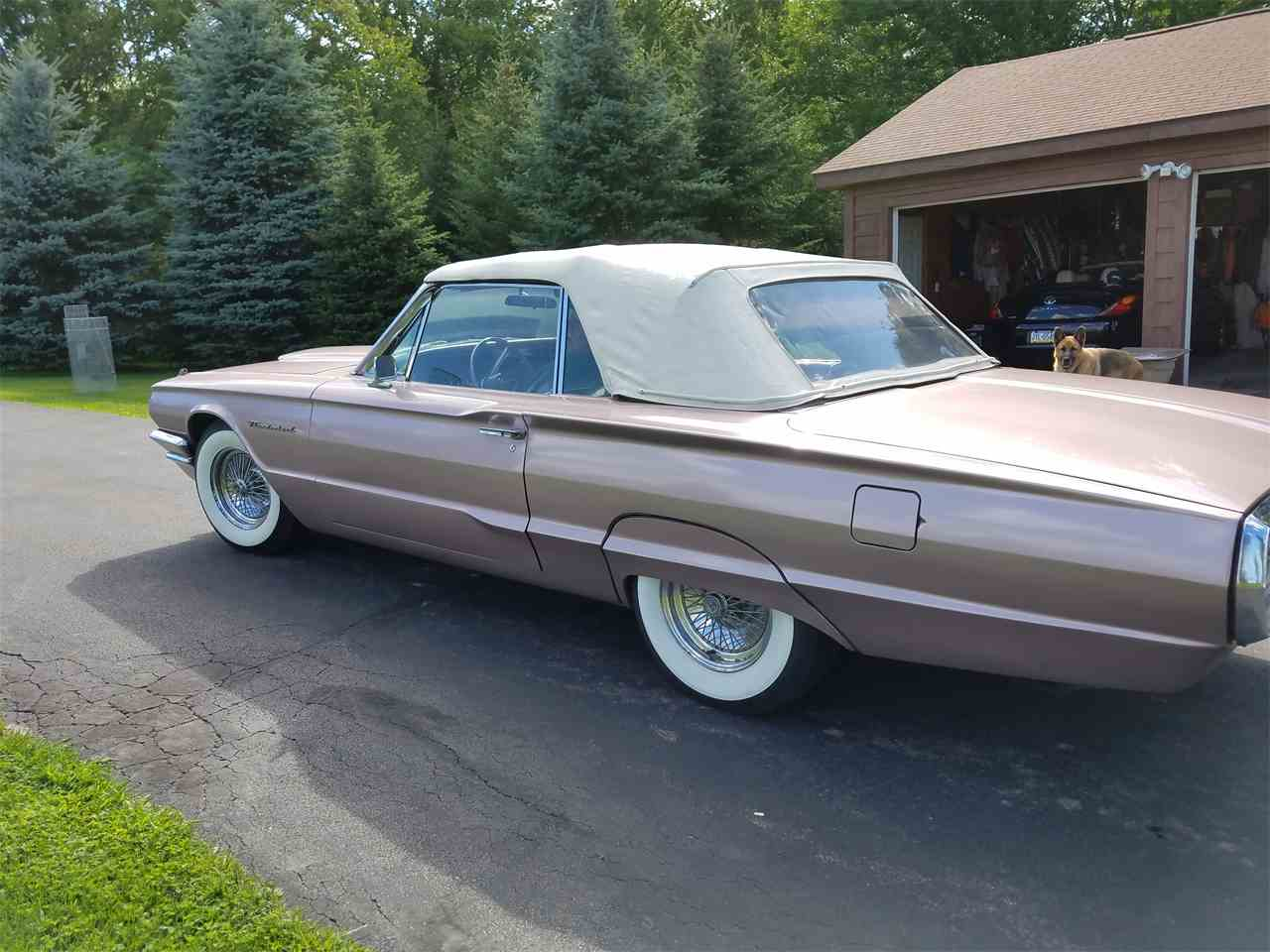 Large Picture of '64 Thunderbird - LGPP