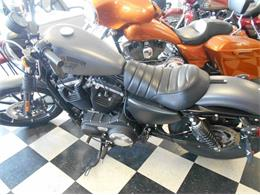 Picture of '15 Sportster - LH23