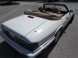 Picture of '94 XJS - LHPC