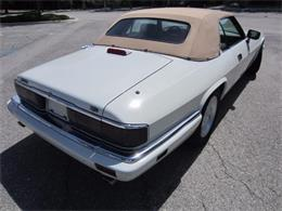 Picture of 1994 XJS located in Delray Beach Florida Offered by Autosport Group - LHPC