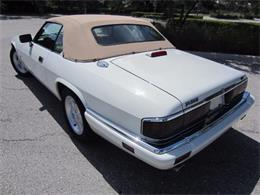 Picture of '94 Jaguar XJS - $14,900.00 Offered by Autosport Group - LHPC