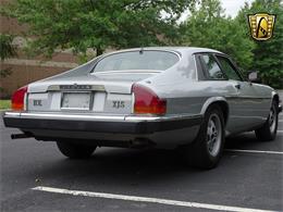 Picture of 1982 Jaguar XJ - $10,995.00 Offered by Gateway Classic Cars - Philadelphia - LI4S