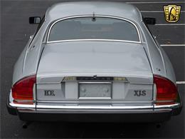 Picture of 1982 XJ - LI4S