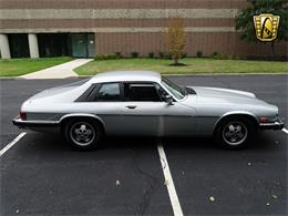 Picture of 1982 XJ located in New Jersey - LI4S