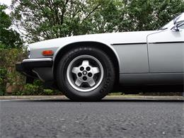 Picture of 1982 Jaguar XJ located in West Deptford New Jersey - LI4S