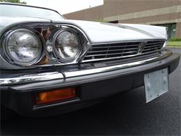 Picture of 1982 XJ - $10,995.00 Offered by Gateway Classic Cars - Philadelphia - LI4S