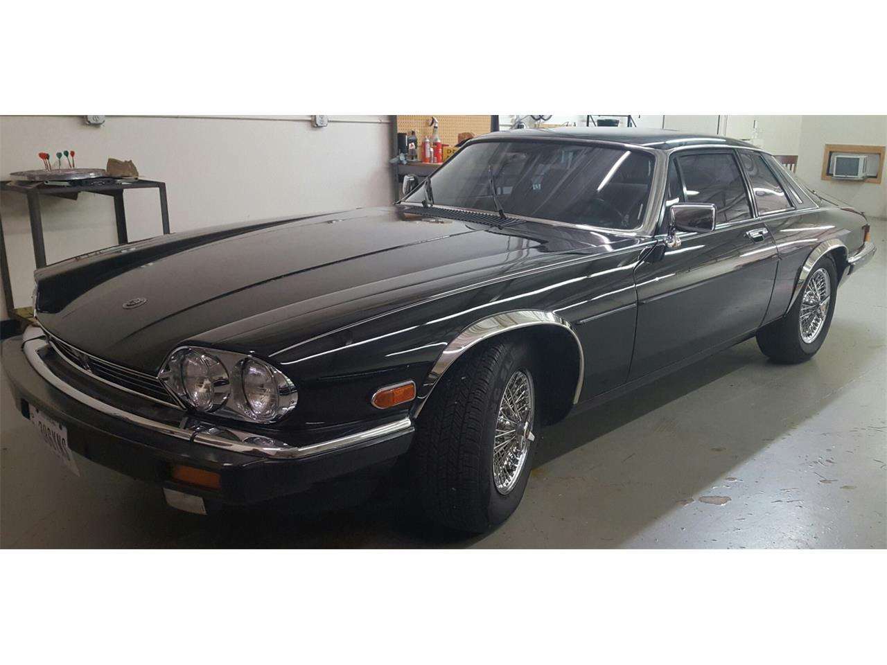 Large Picture of '86 XJS - LI7Q