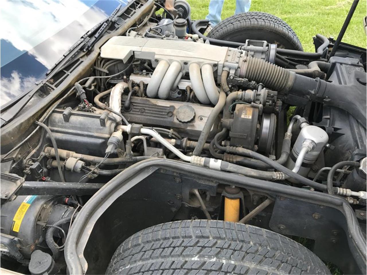 Large Picture of '86 Corvette - LJBB