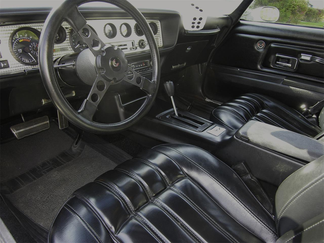 Large Picture of '77 Firebird Trans Am - LG3S