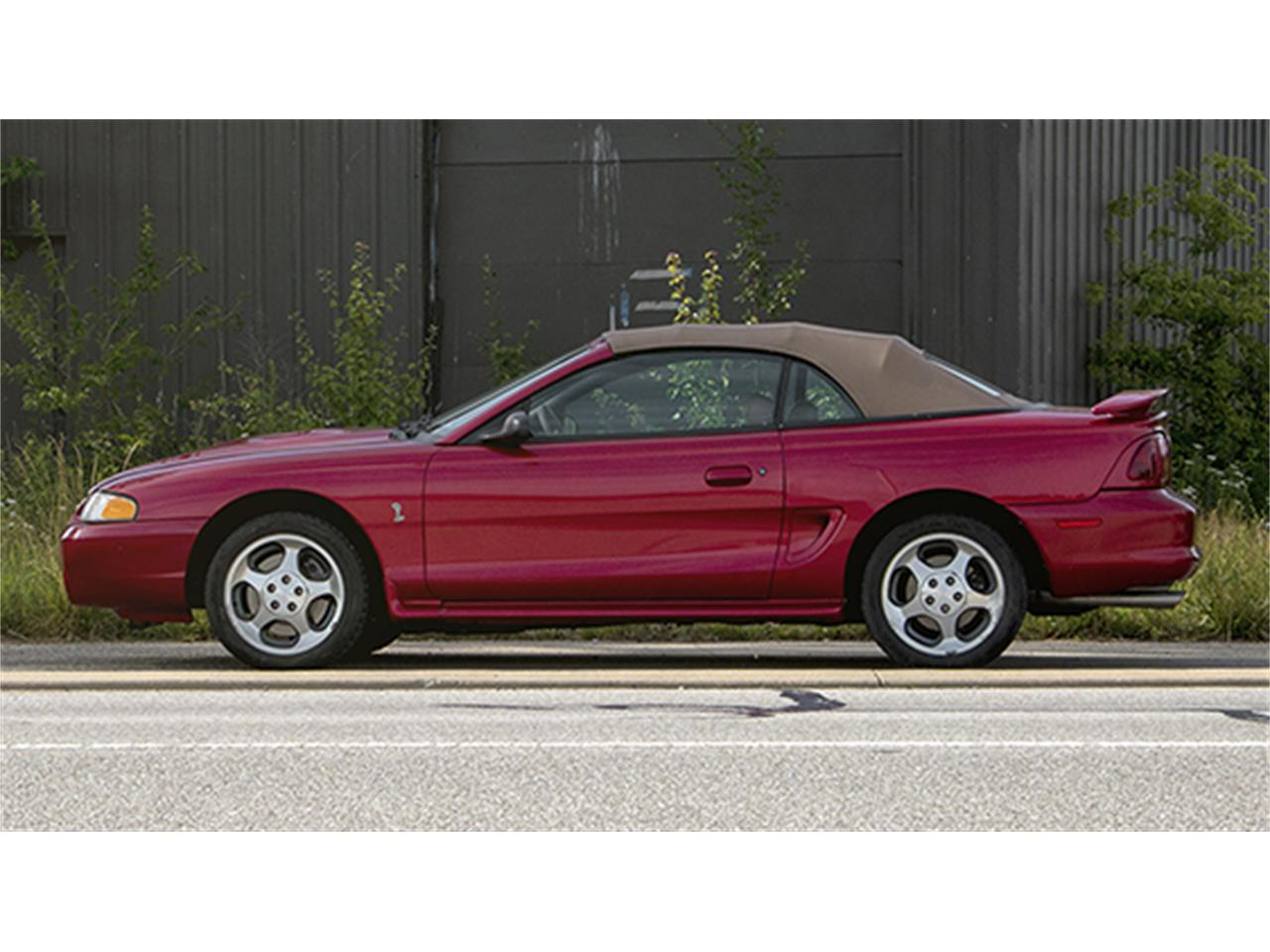 Large Picture Of 1996 Ford Mustang Svt Cobra Convertible Barn Find Auction Vehicle Offered By