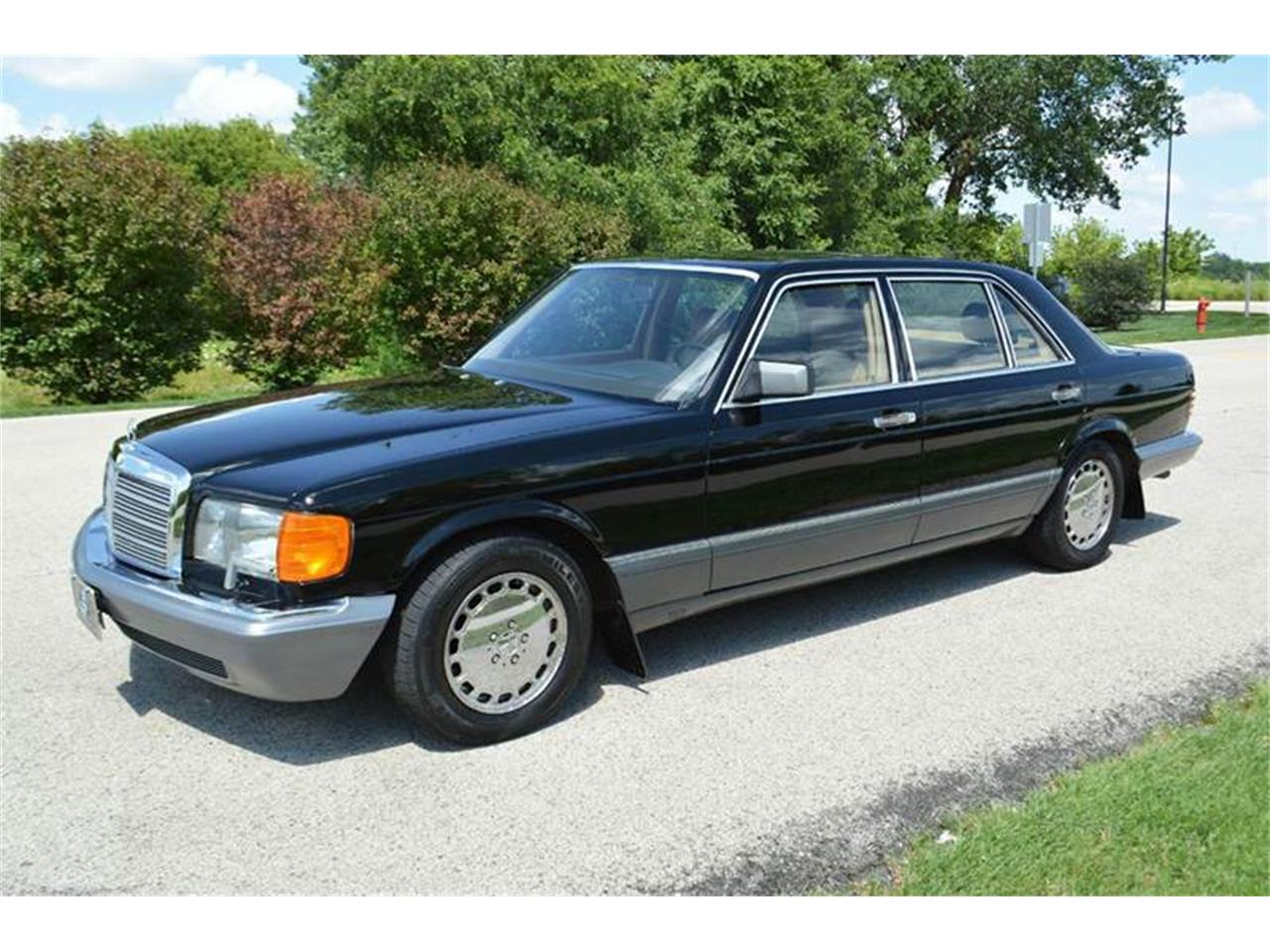 Large Picture of '89 Mercedes-Benz S-Class - LLPD