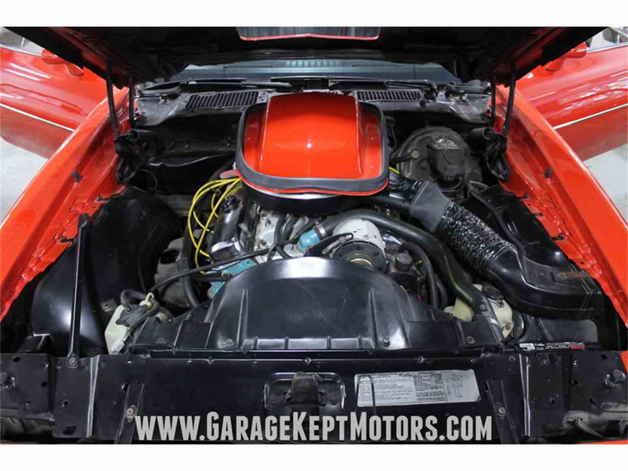 1978 pontiac firebird trans am for sale for Grand rapids motor car