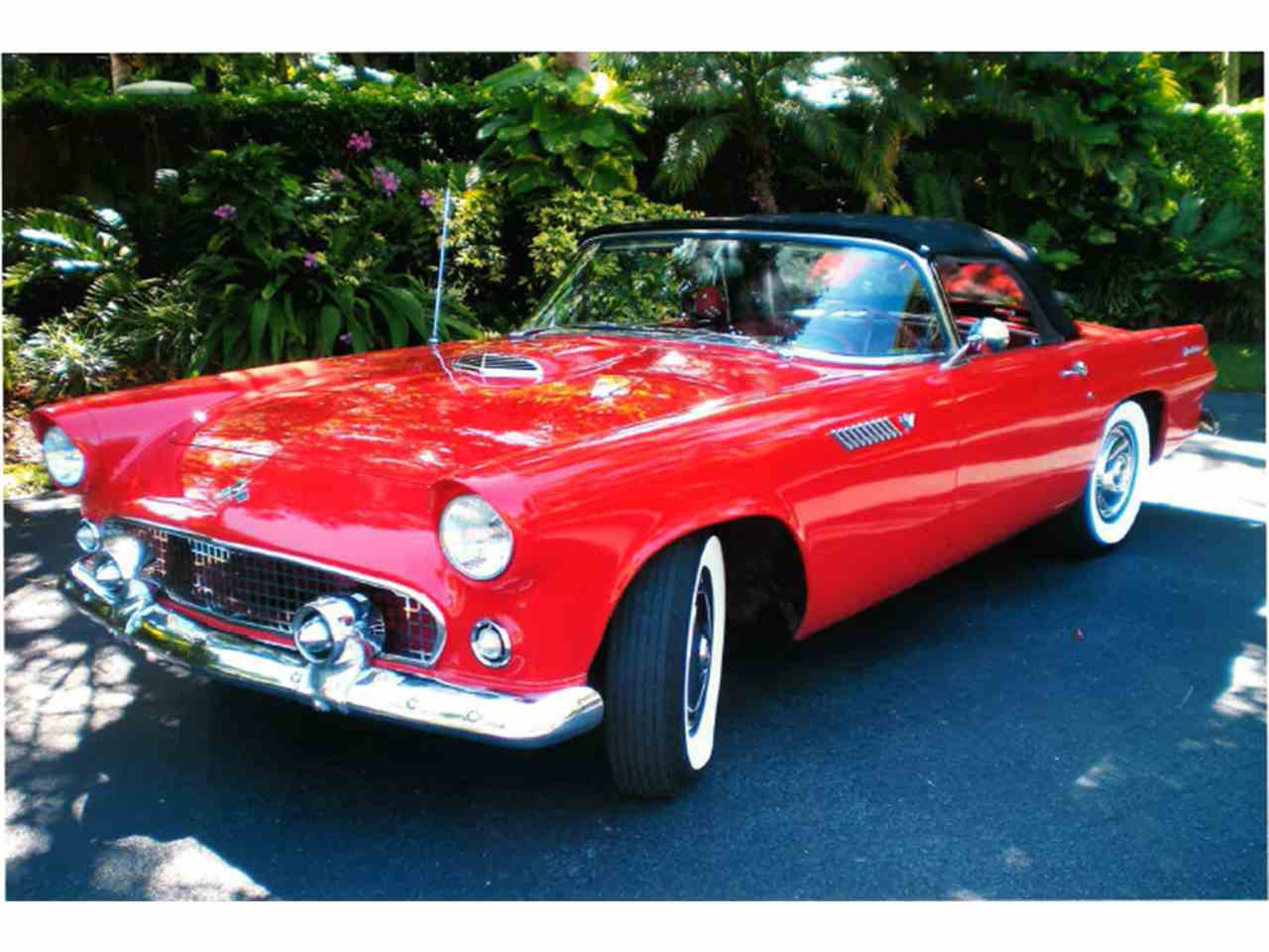 Large Picture of '55 Ford Thunderbird located in Miami Florida - LMC8