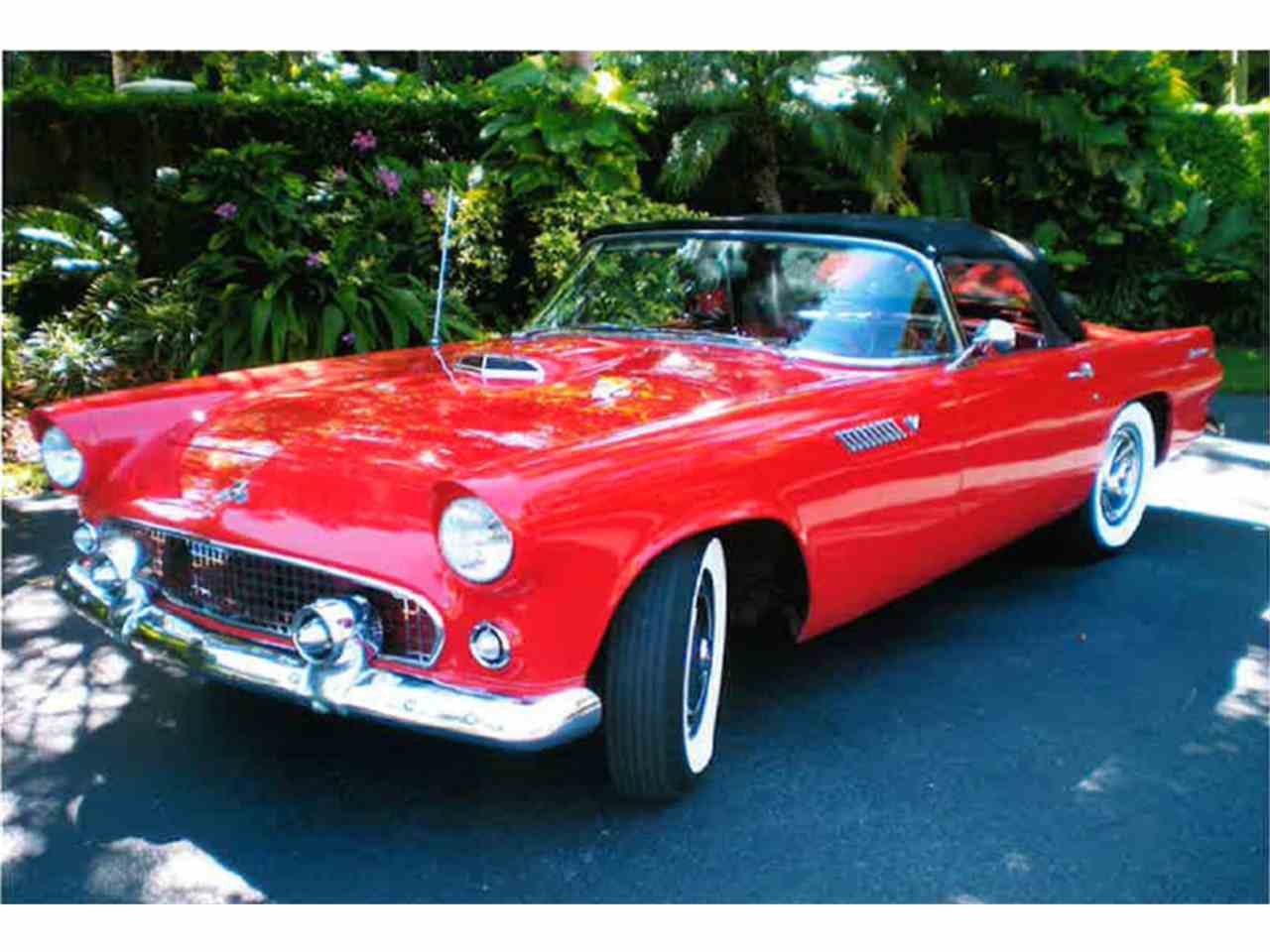 Large Picture of Classic 1955 Ford Thunderbird located in Florida - $41,000.00 Offered by a Private Seller - LMC8