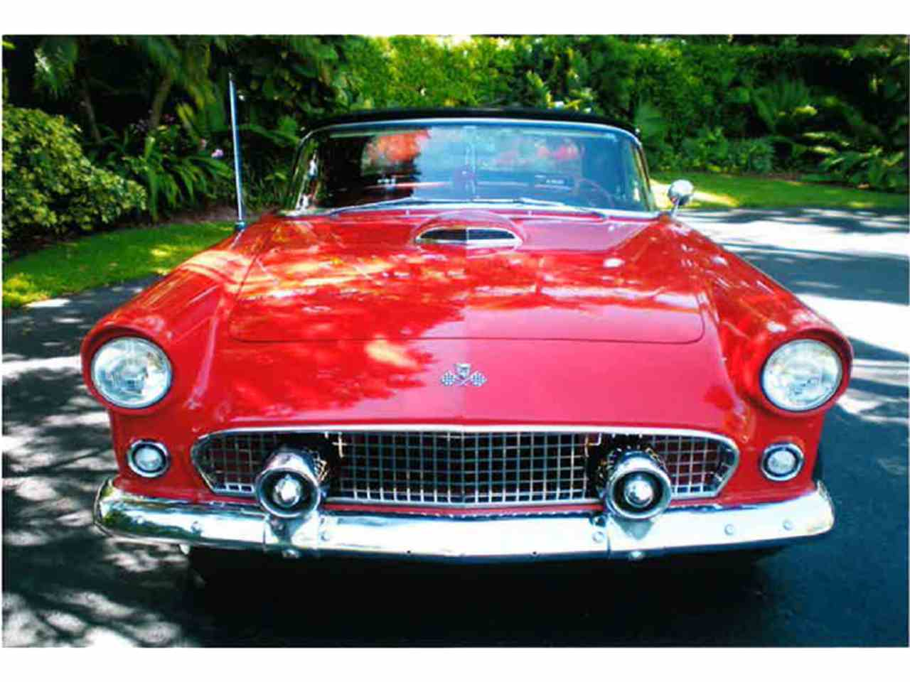 Large Picture of Classic 1955 Ford Thunderbird Offered by a Private Seller - LMC8
