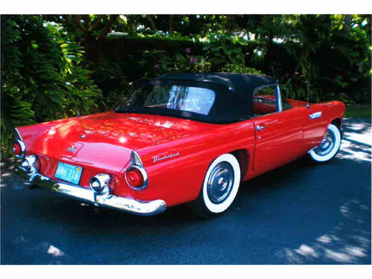 Large Picture of '55 Ford Thunderbird Offered by a Private Seller - LMC8