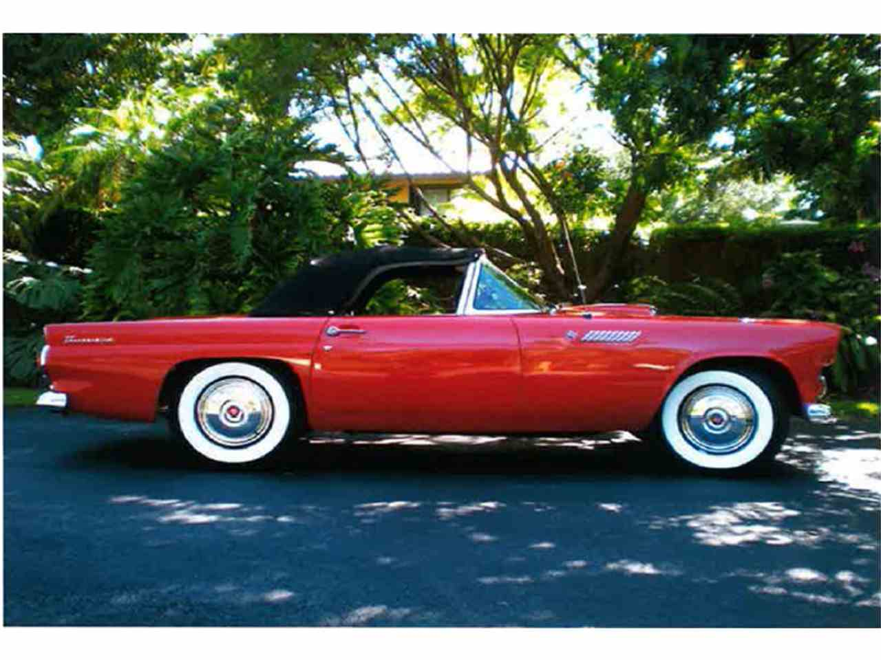 Large Picture of '55 Thunderbird located in Miami Florida Offered by a Private Seller - LMC8