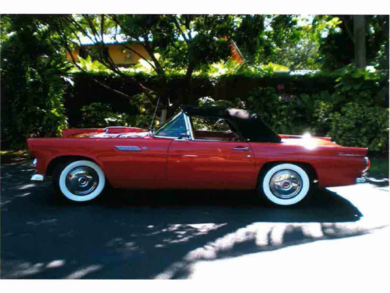 Large Picture of '55 Thunderbird located in Florida - LMC8