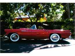 Picture of 1955 Ford Thunderbird located in Miami Florida - LMC8