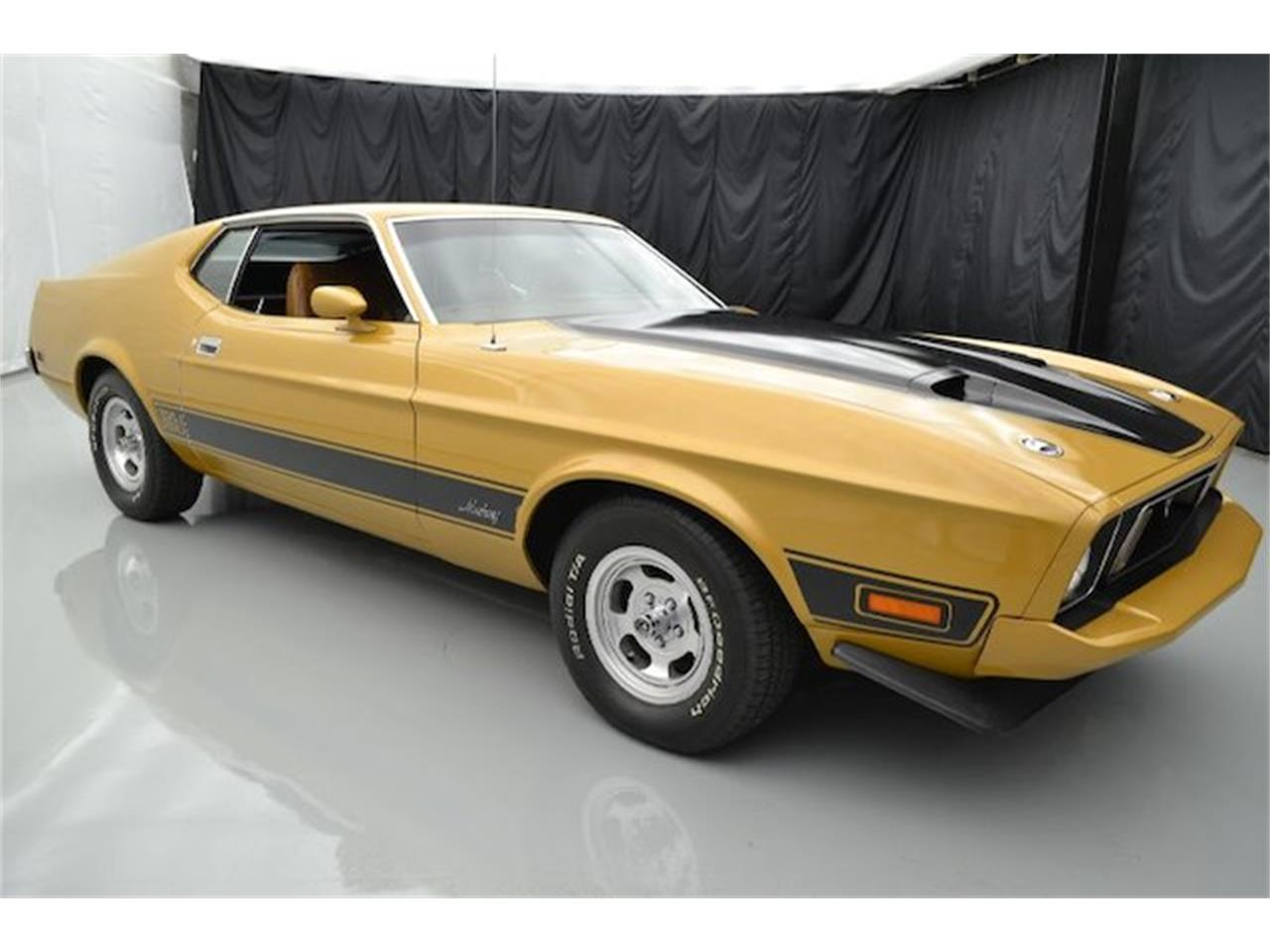 Large Picture of '73 2-Dr Coupe - LMHC