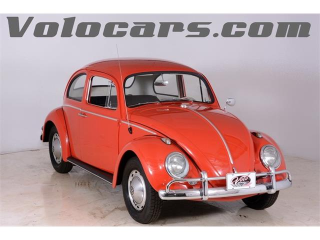 Picture of '60 Beetle - LO6X