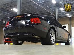 Picture of '02 Mustang - LOGA