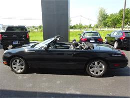 Picture of '02 Thunderbird - LNFU