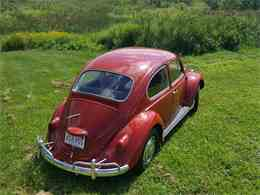 Picture of '67 Beetle - LOTQ