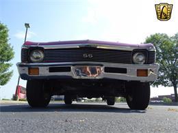Picture of '70 Nova - LP60