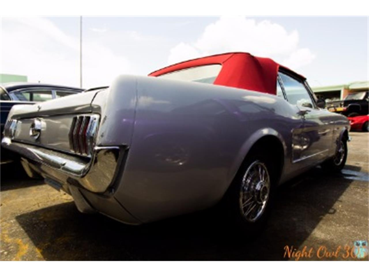 Large Picture of '65 Mustang - LPD5