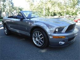 Picture of '07 GT500 - LNKH