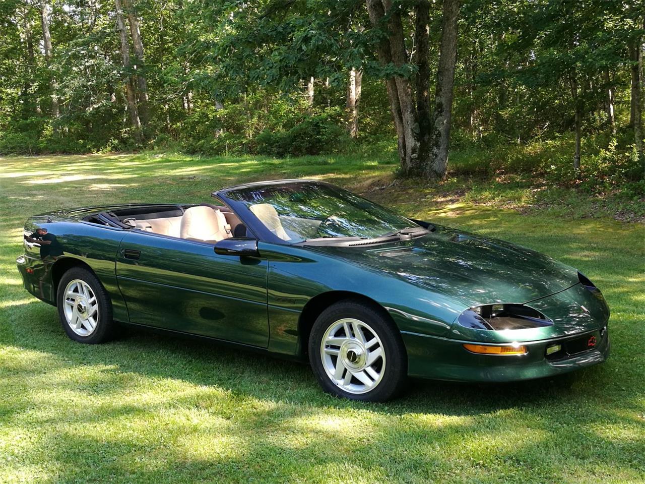 Large Picture of '94 Camaro - LPV1