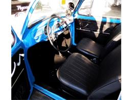 Picture of '66 Beetle - LQEO