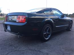 Picture of '08 Mustang - LQEX