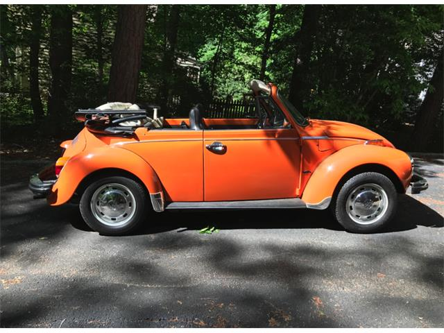 Picture of '76 Super Beetle - LQW9