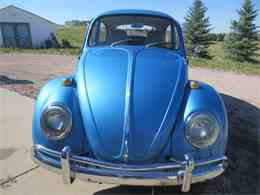 Picture of Classic 1964 Beetle located in Parker Colorado - LRER