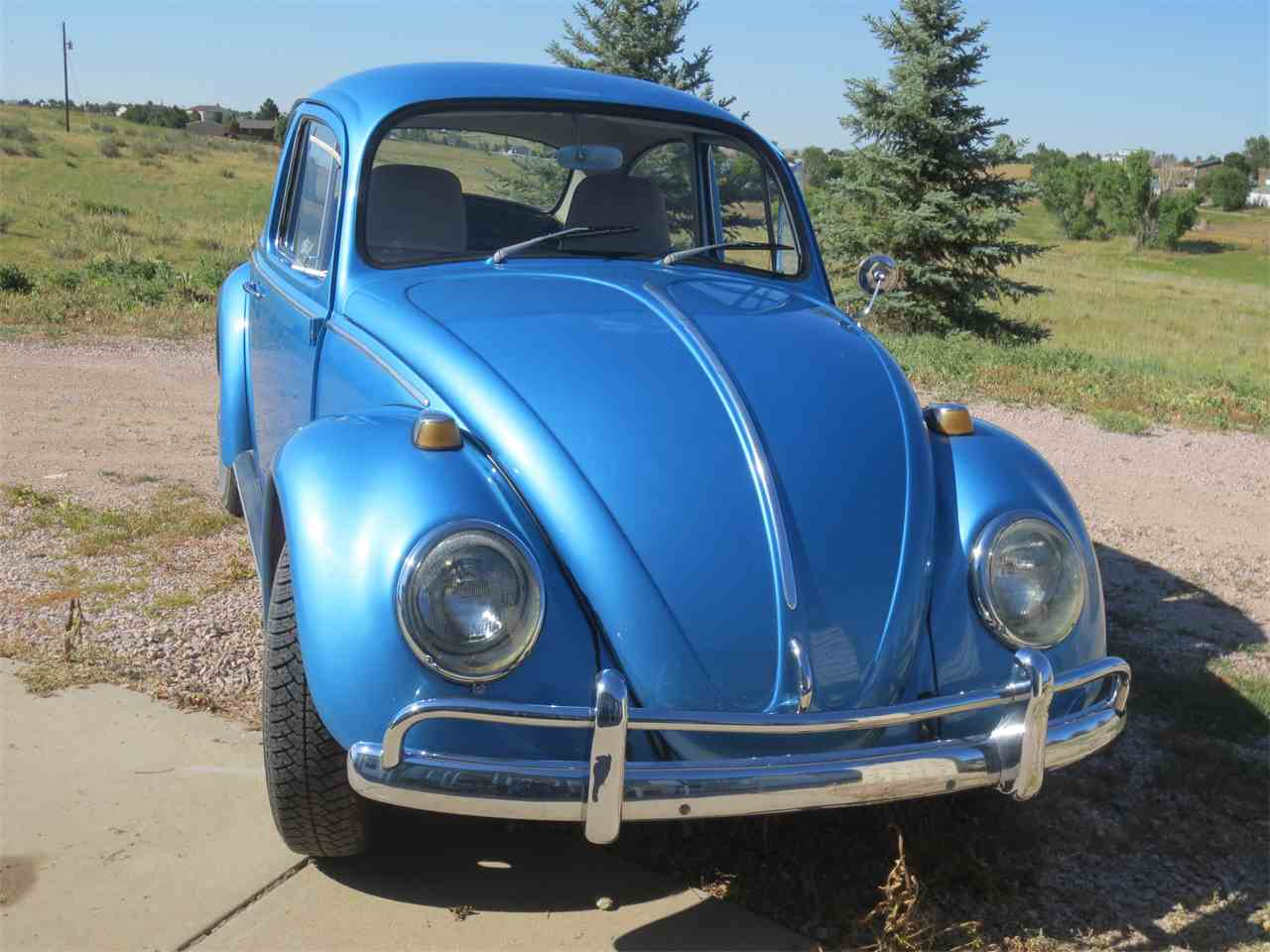 Large Picture of 1964 Volkswagen Beetle - LRER