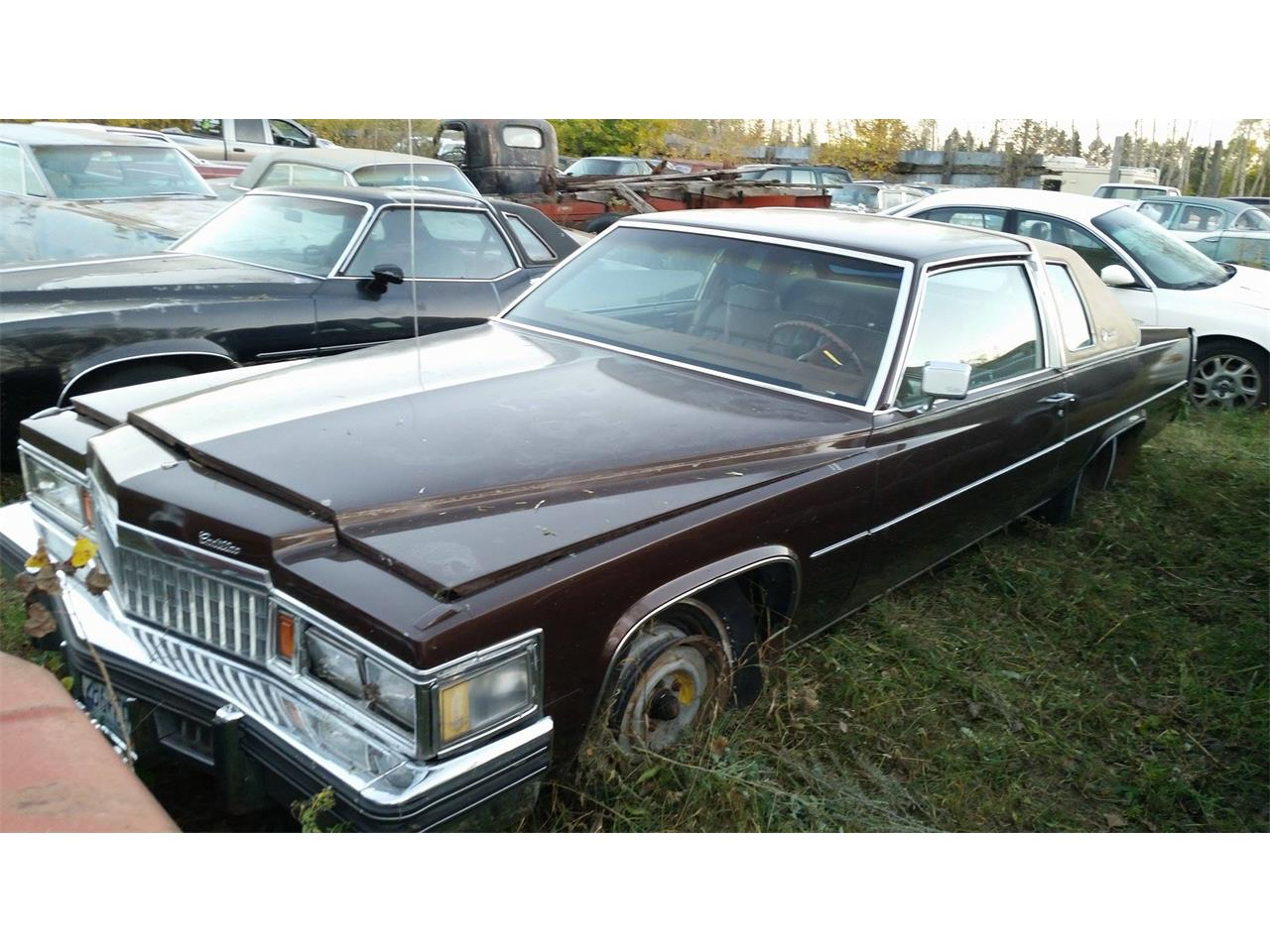 Large Picture of 1978 Coupe DeVille located in Minnesota Offered by Backyard Classics - LRR9