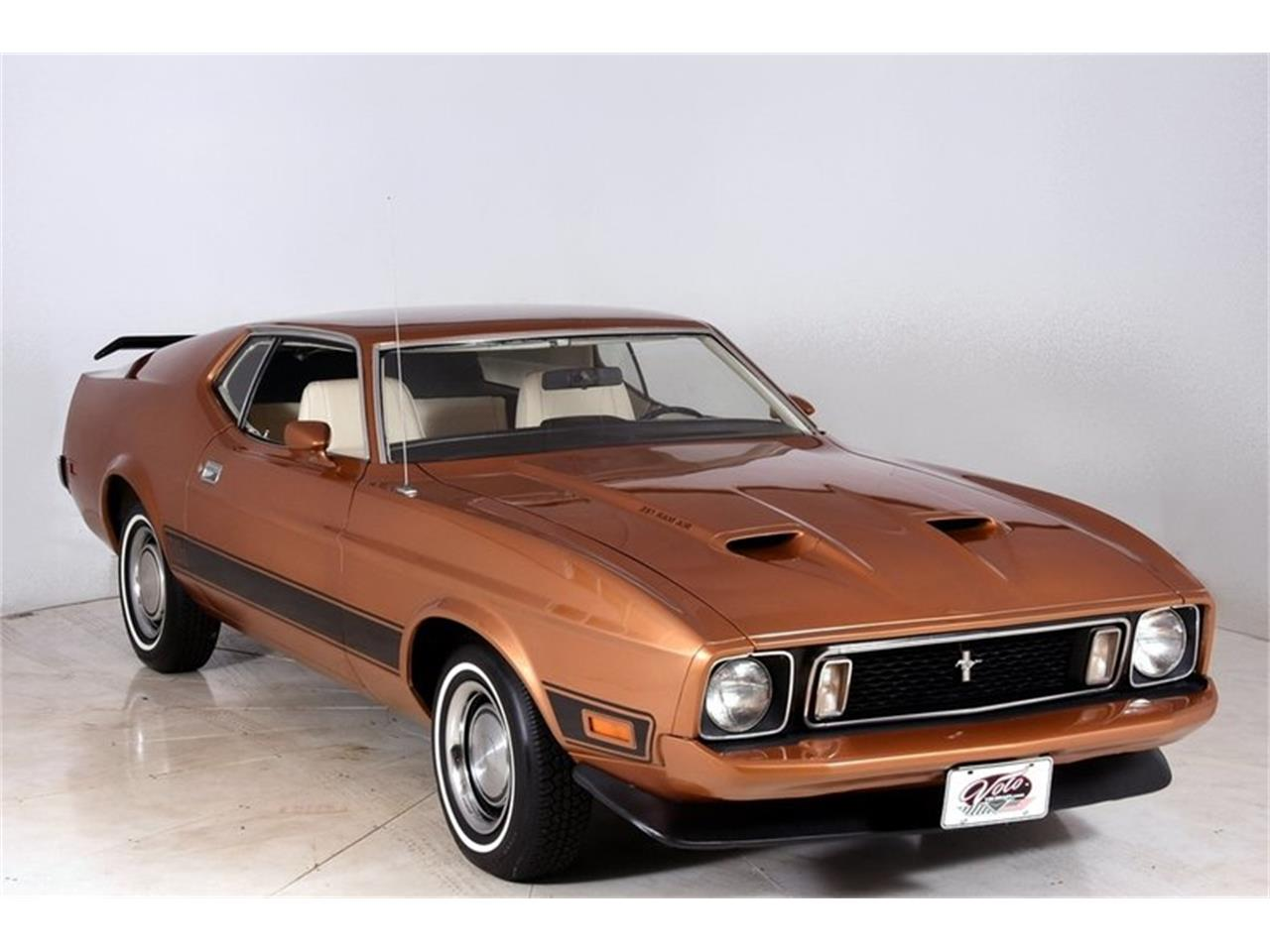 Large Picture of '73 Mustang Mach 1 - LRT7