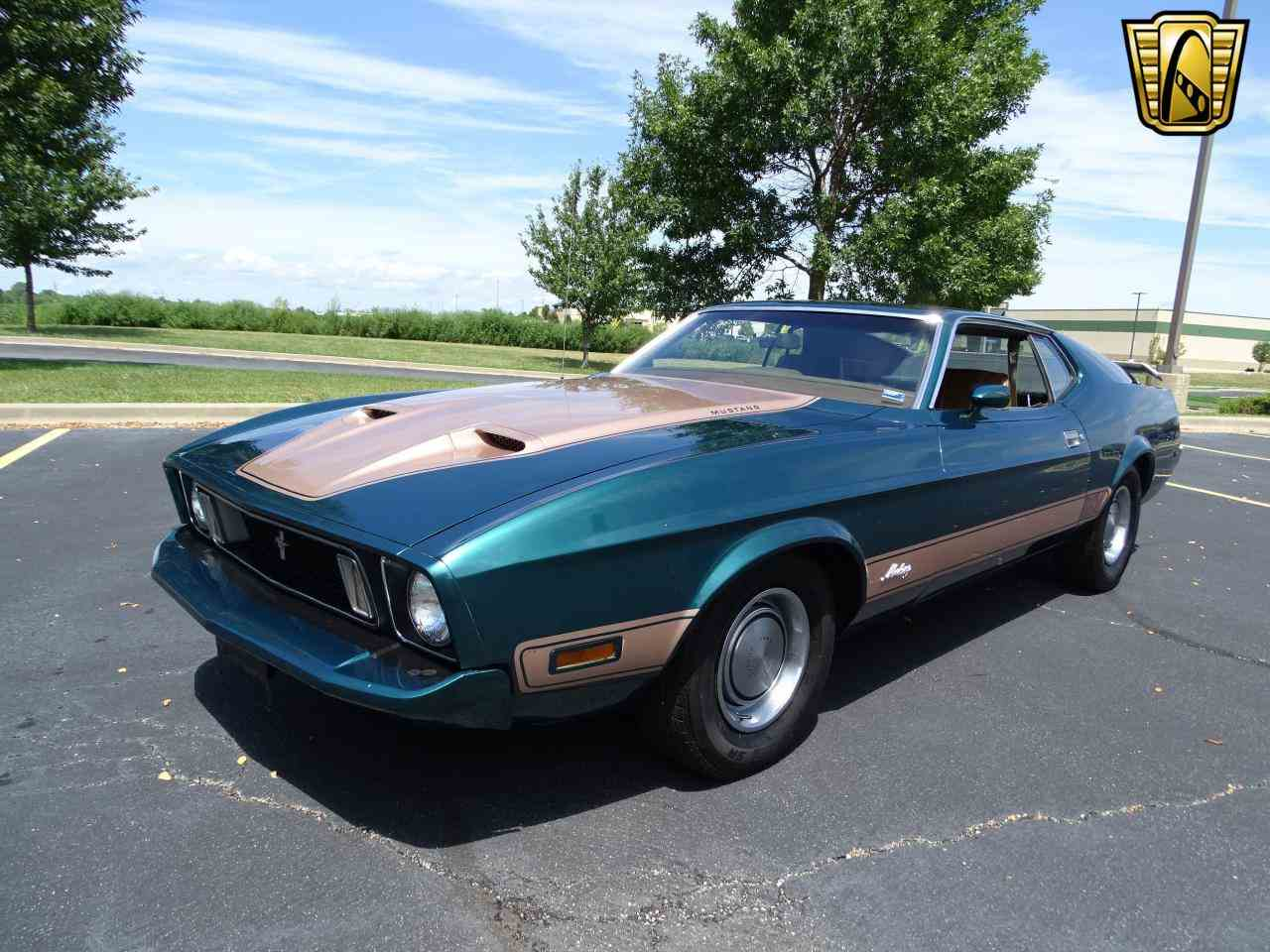 Large Picture of '73 Mustang - LRW1