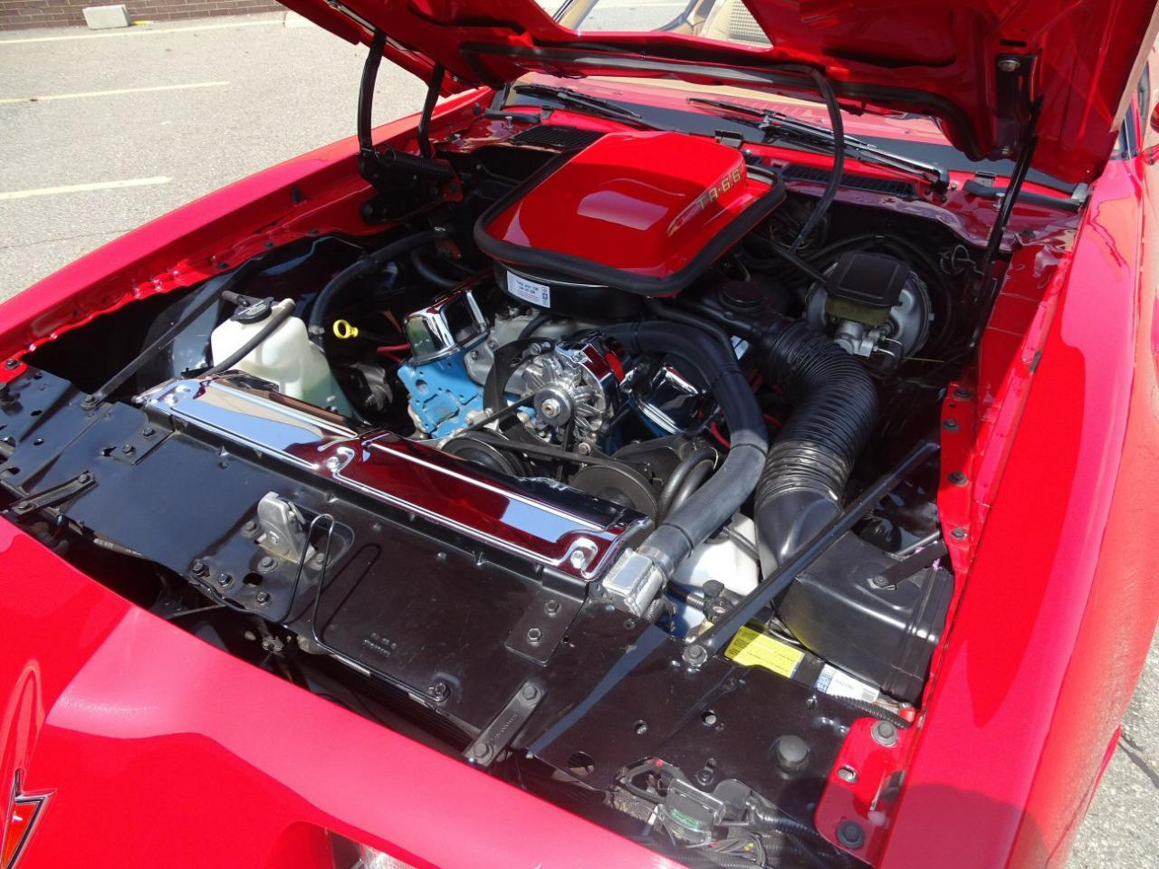 Large Picture of '80 Firebird Trans Am - LRXD