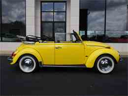 Picture of '71 Beetle - LS80