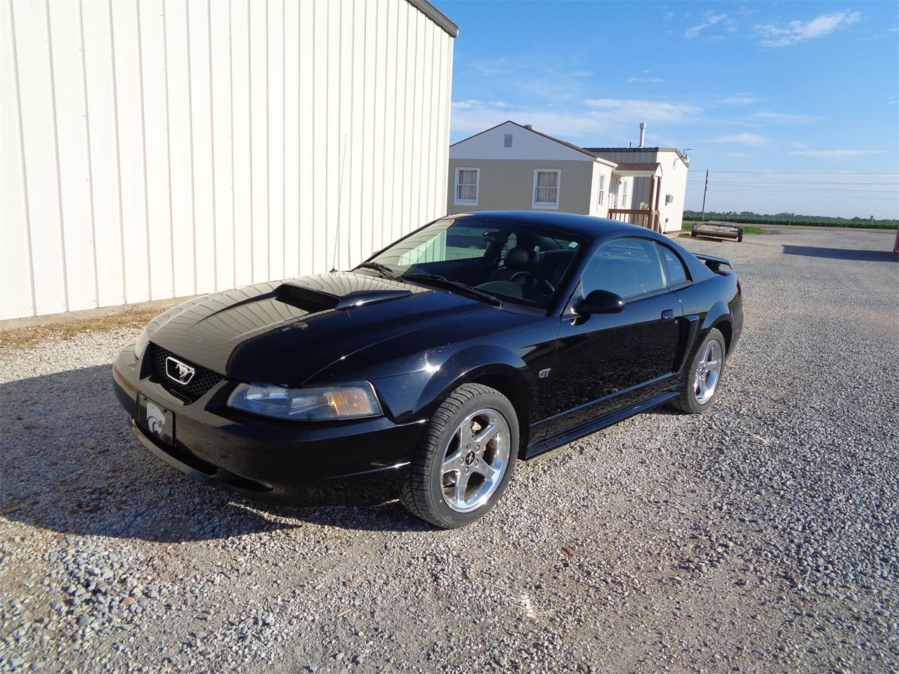 Large picture of 03 mustang gt lscp