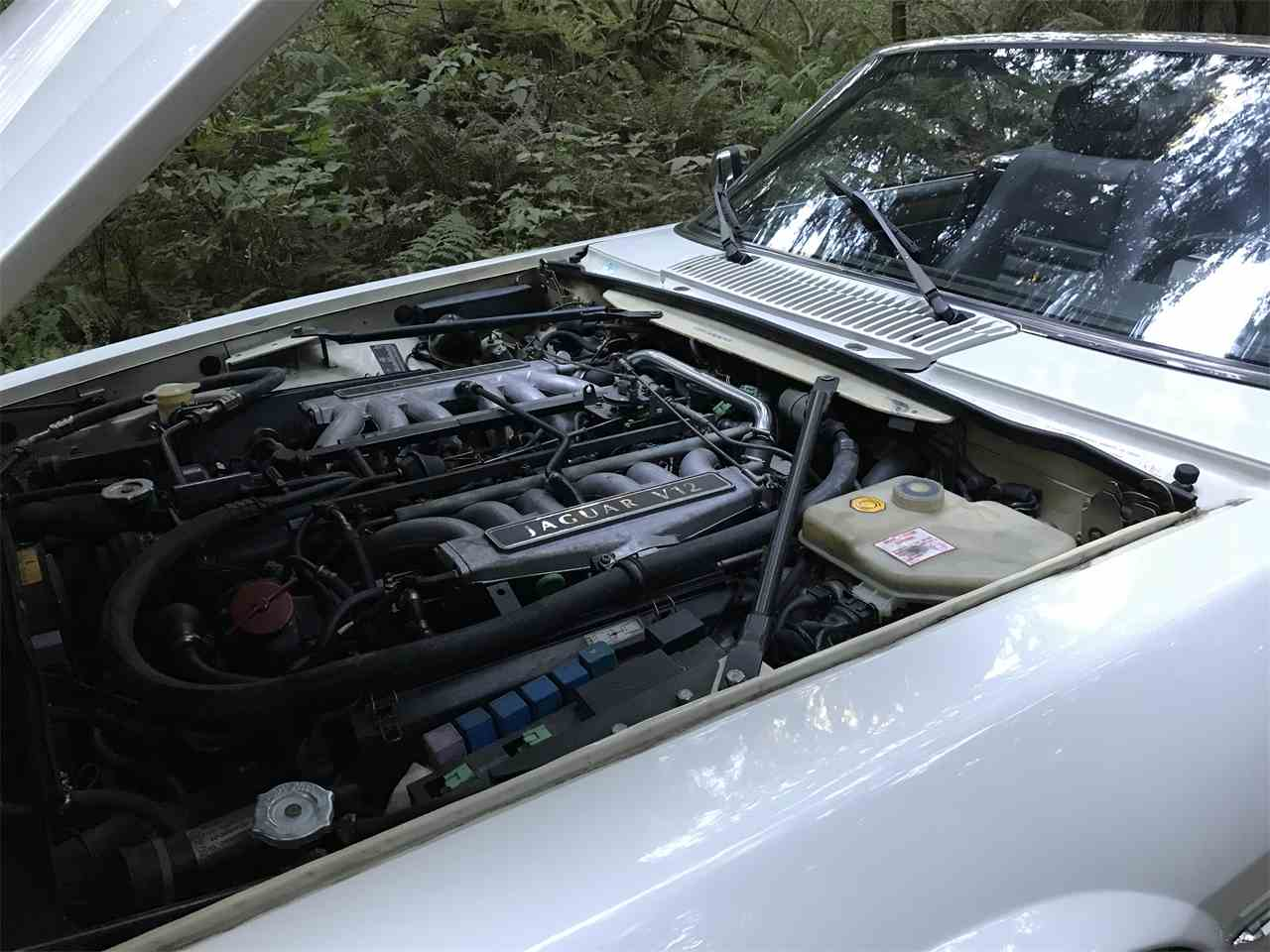 Large Picture of '92 XJS - LSG7