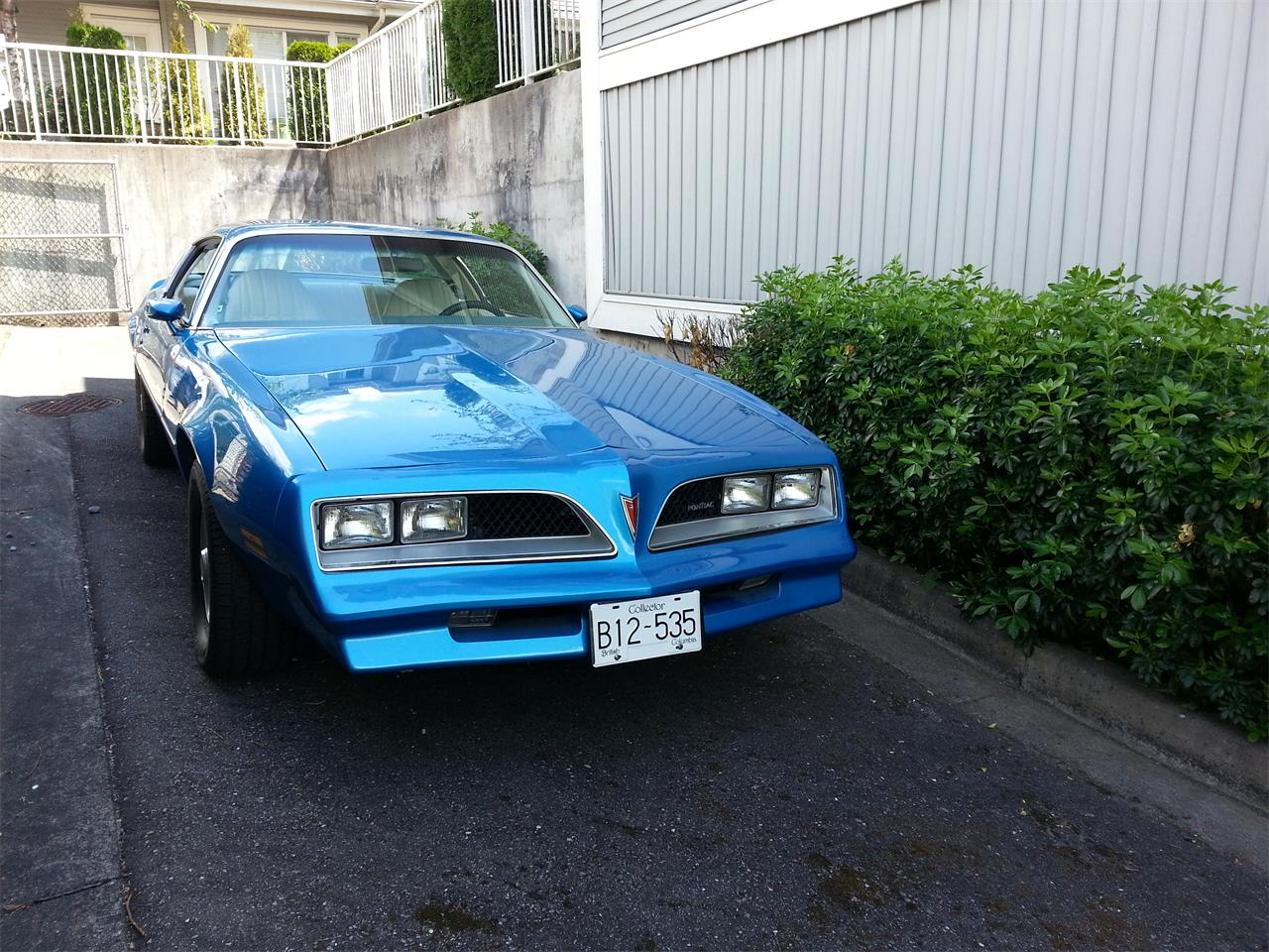 Large Picture of '78 Firebird - LSUB