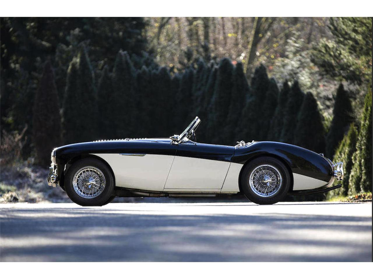 Large Picture of Classic 1955 100-4 located in Minneapolis Minnesota Offered by Jaguar Land Rover Minneapolis - LT01