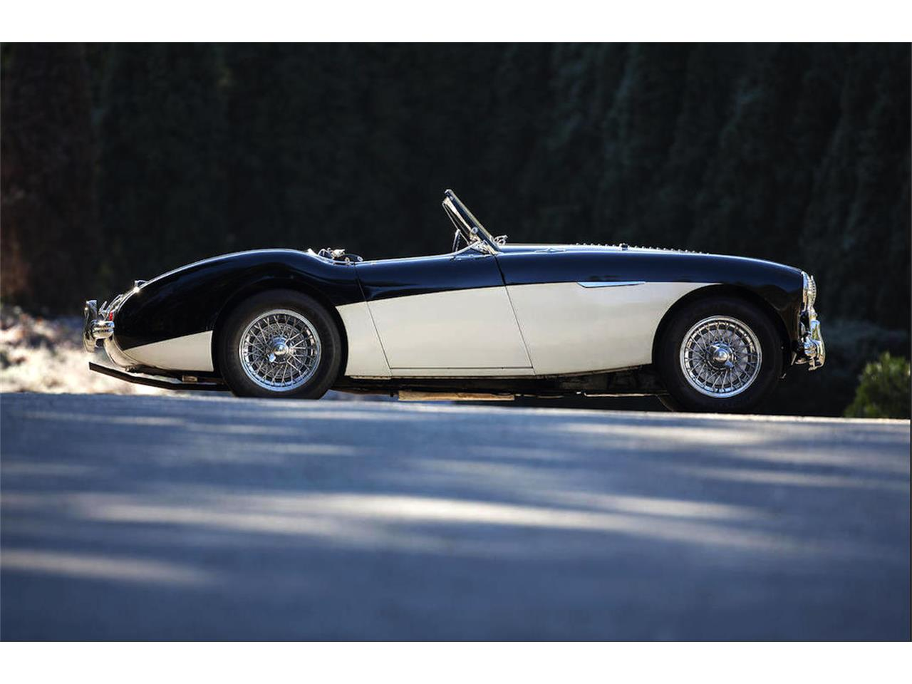Large Picture of 1955 Austin-Healey 100-4 - LT01